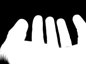 whitehands