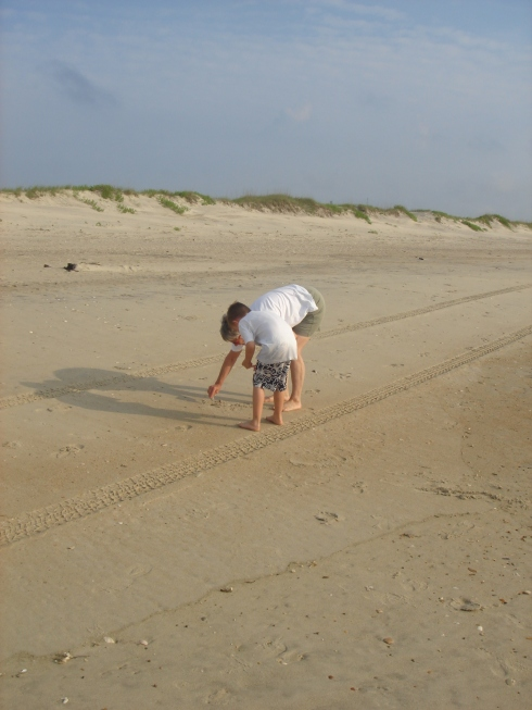 shell searching