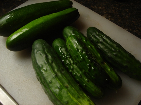 first cukes and zukes