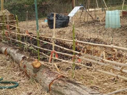 hope fence